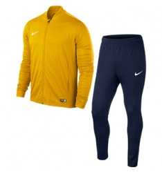 University Gold-Obsidian-Varsity Maize  739