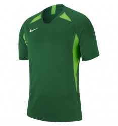 Pine Green-Action Green  302